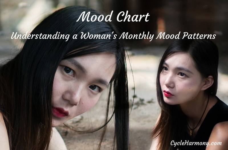 mood chart a woman's monthly mood patterns