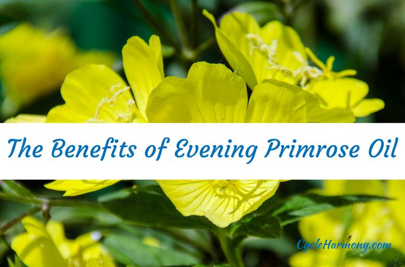 PMS Remedy Evening Primrose Oil