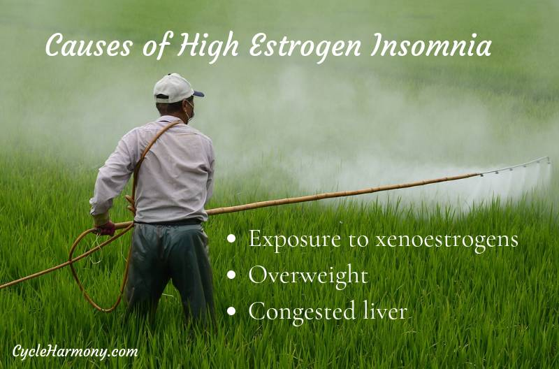High Estrogen Insomnia - Cycle Harmony